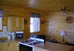 Cabin #4 - Kitchen & Living Area