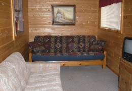 Cabin #5 - Living Room